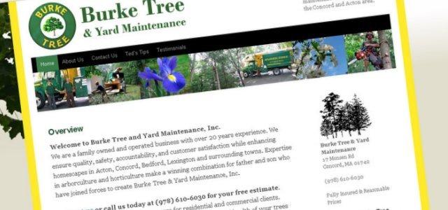 Burke Tree Cropped